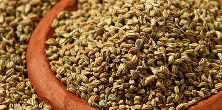 214-amazing-benefits-of-carom-seeds-for-skin-hair-and-health-466769981.jpg