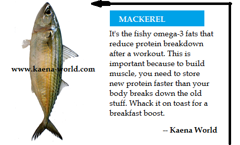 0000528_mackerel_870