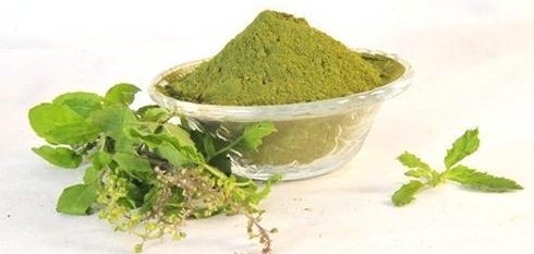 tulsi-leaf-powder-500x500